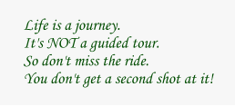 Life is a journey.It's NOT a guided tour.So don't miss the ride.You don't get a second shot at it!